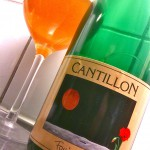 cantillon_fou_foune_2011